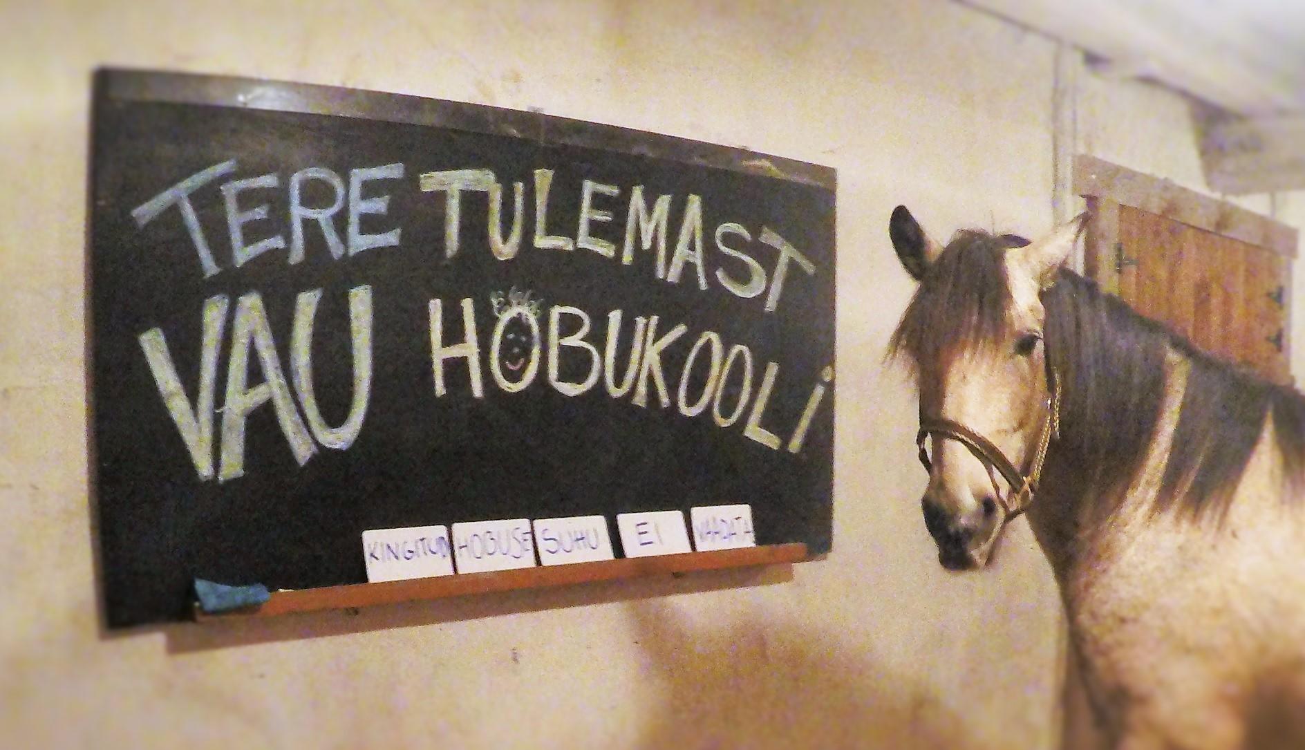 Hobukool