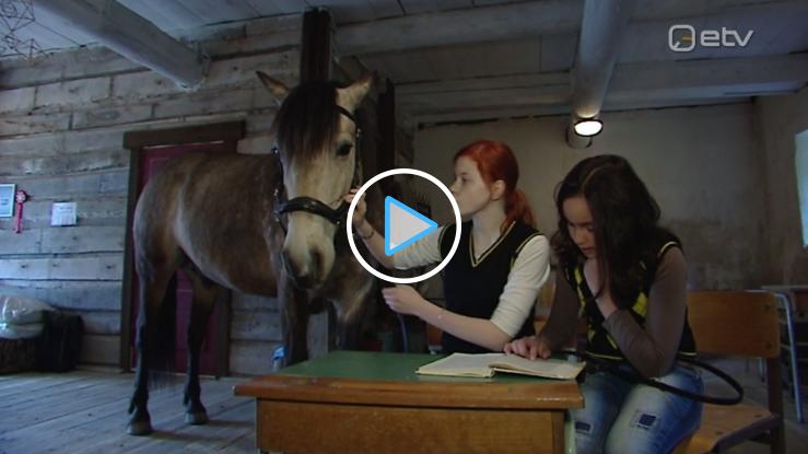 ERR Ringvaade: Vodja koolis õpetavad lapsi lugema hobused
